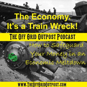 The economy is a trainwreck! How to safeguard your money in an economic meltdown