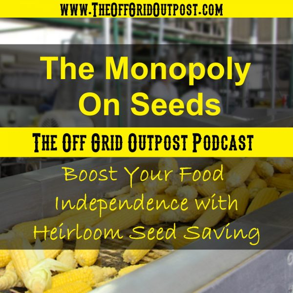 The monopoly on seeds - boost your food independenve with heirloom seed saving