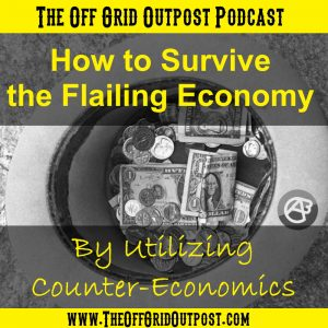 How to survive the flailing economy by utilizing counter-economics
