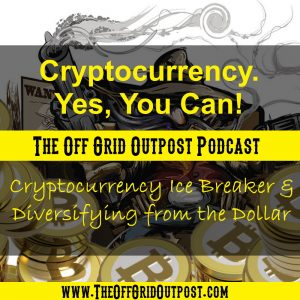 cryptocurrency icebreaker and diversifying from the dollar
